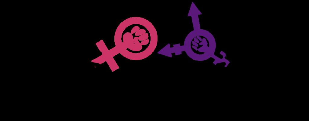 La guerra feminista contra la ideología de género