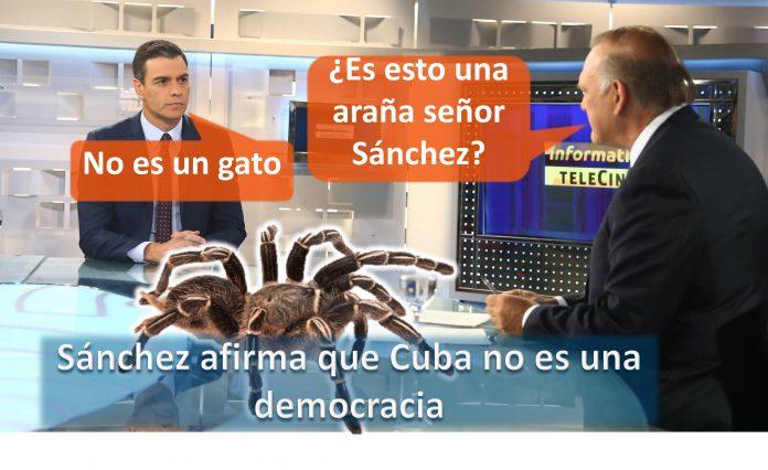 Sánchez afirma que Cuba no es una democracia